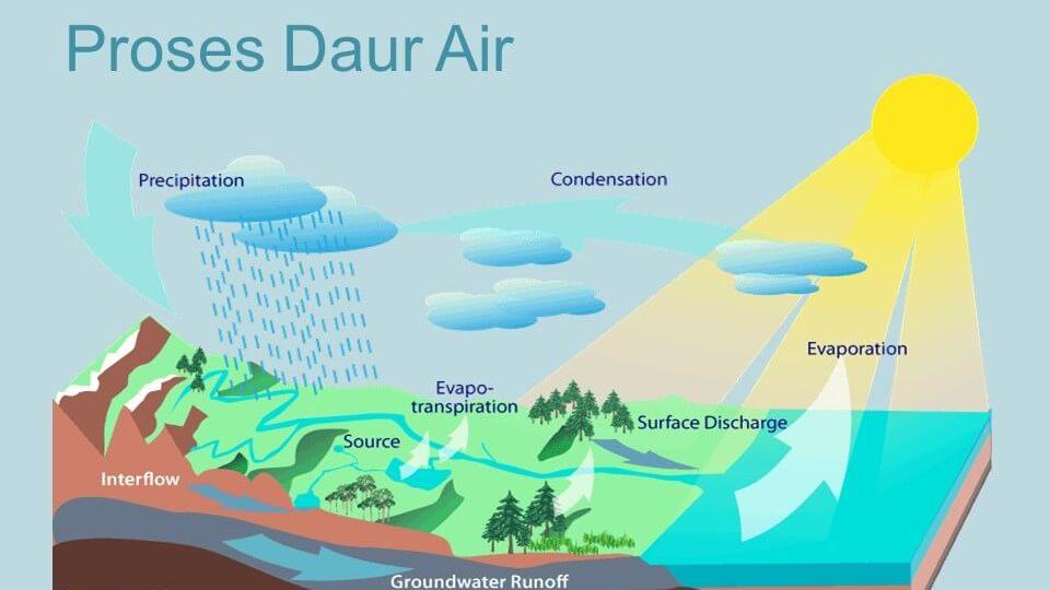 Jelaskan Perbedaan Antara Transpirasi Dan Evaporasi Dalam ...